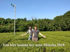 SHINCHA 2019 - ARACHA - Kirishima